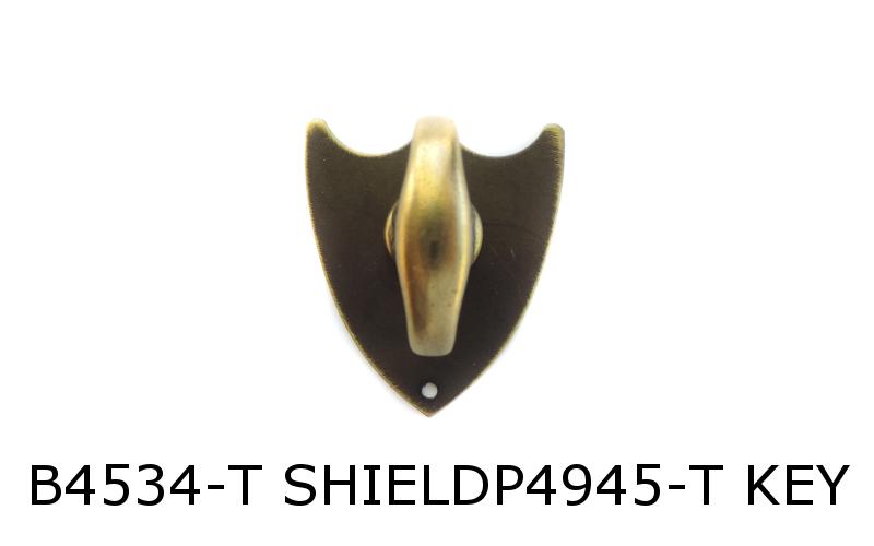 B4534-T SHIELDP4945-T KEY-1